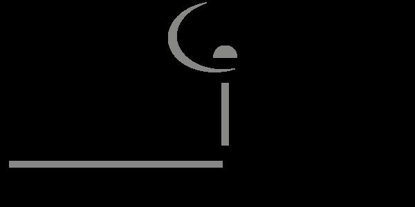 logo spedidam partnership Stracho Temelkovski musician multi instrumentalist